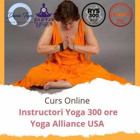 Curs instructori yoga TTC300